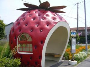 fruit-bus-stops-japan-ameblo-jp5