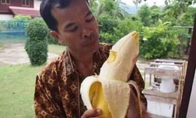 pisang-raksasa-papua